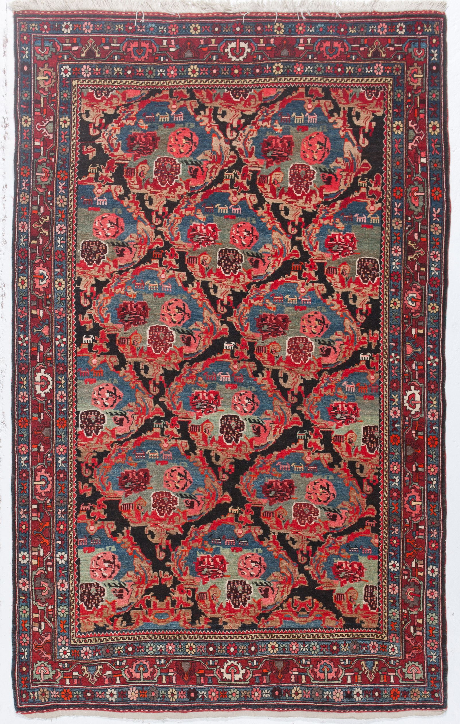 hip in gray itm rug the western area carpet purples blues blend life for cool dynamix rugs nicole designer to cotton designed mind collection home kenmare floral crisp and with are miller woman transitional brought